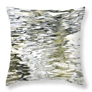 Freedom Throw Pillow by David Norman