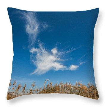 Throw Pillow featuring the photograph Freedom by Davorin Mance