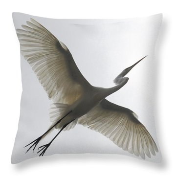 Throw Pillow featuring the photograph Freedom Of Flight by Howard Bagley