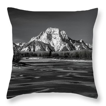 Freeze-up Throw Pillow