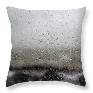 Freezing Rain Throw Pillow