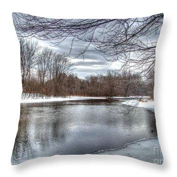 Freezing Up Throw Pillow