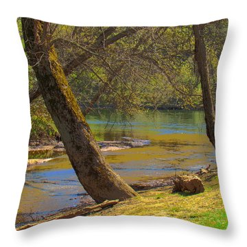 French Broad Tributary Throw Pillow