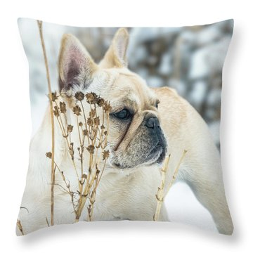 French Bulldog In The Snow Throw Pillow