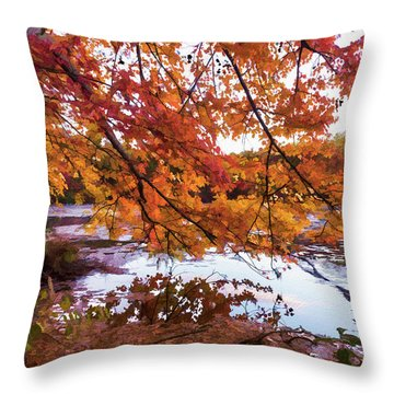 French Creek 15-107 Throw Pillow by Scott McAllister