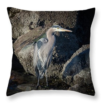 Throw Pillow featuring the photograph French Creek Heron by Randy Hall