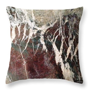 Throw Pillow featuring the photograph French Marble by Therese Alcorn