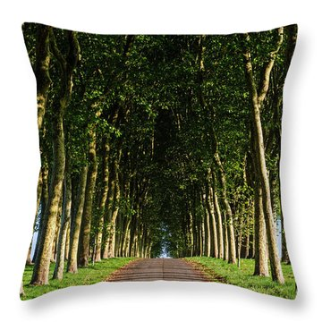 French Tree Lined Country Lane Throw Pillow