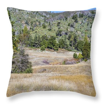 French Valley Throw Pillow