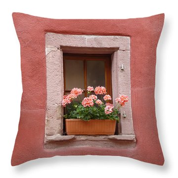 French Window Throw Pillow by John Bushnell