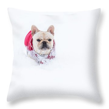 Frenchie In The Snow Throw Pillow