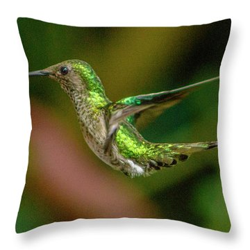 Frequent Flyer 2, Mindo Cloud Forest, Ecuador Throw Pillow