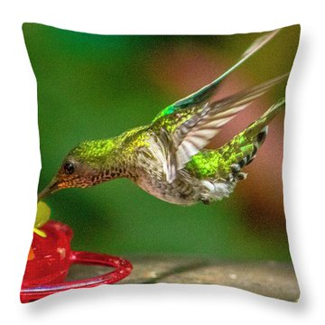 Frequent Flyer 3 Throw Pillow