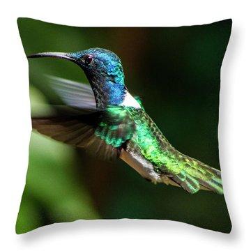 Frequent Flyer, Mindo Cloud Forest, Ecuador Throw Pillow