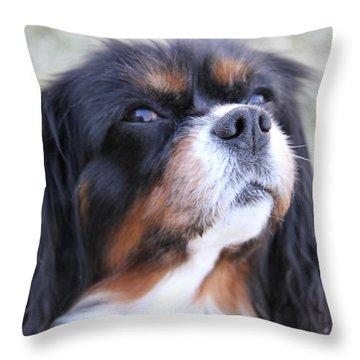 Fresh Air Throw Pillow by Bobbie Moller