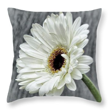 Fresh As A Daisy Throw Pillow