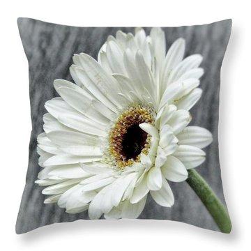 Fresh As A Daisy Throw Pillow by Karen Stahlros