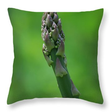 Fresh Asparagus Throw Pillow