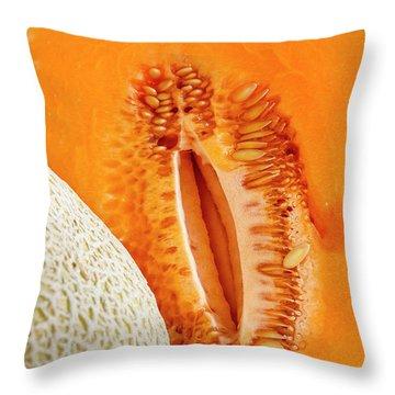 Fresh Cantaloupe Melon Throw Pillow