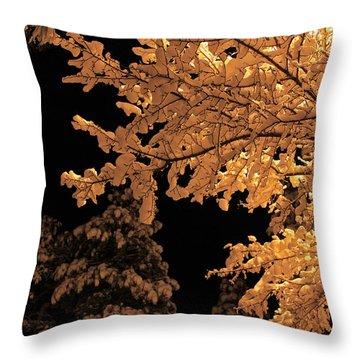 Fresh Cloak Throw Pillow by Gary Kaylor