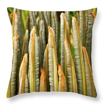 Fresh Fronds Throw Pillow