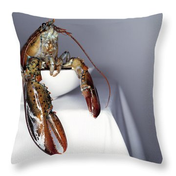 Fresh Lobster On A White Plate And Table. Close Up Throw Pillow