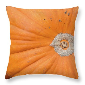 Fresh Organic Orange Giant Pumking Harvesting From Farm At Farme Throw Pillow
