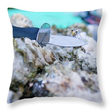 Throw Pillow featuring the photograph Fresh Oysters by Erin Kohlenberg