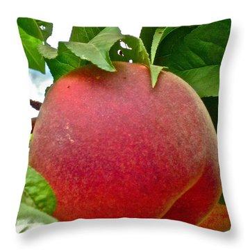 Fresh Peach Throw Pillow by Gwyn Newcombe