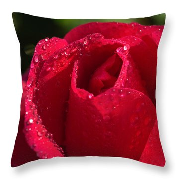 Fresh Rose Throw Pillow