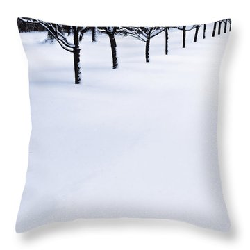Fresh Snow Throw Pillow by John Hansen