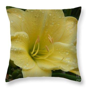 Fresh Yellow Throw Pillow