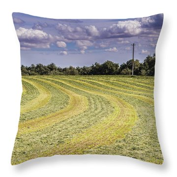 Freshly Mown Hay  Throw Pillow by John Trax