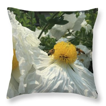 Throw Pillow featuring the photograph Fried Egg Collectors by Rasma Bertz