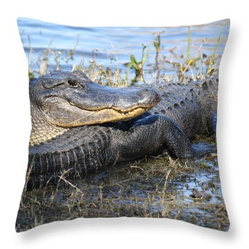 Throw Pillow featuring the painting Friend, I Got Your Back by Roena King