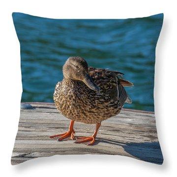 Friendly Duck Throw Pillow