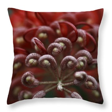 Throw Pillow featuring the photograph Friendly Foe by Stephen Mitchell