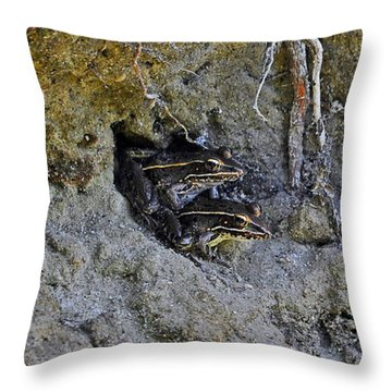 Throw Pillow featuring the photograph Friendly Frogs by Al Powell Photography USA