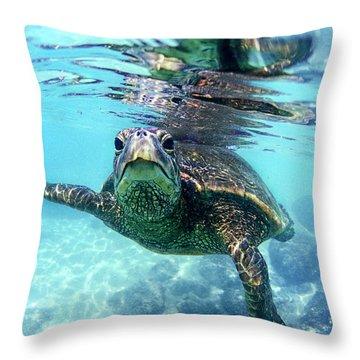 Sea Life Throw Pillows