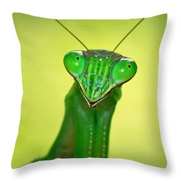 Friendly Mantis Throw Pillow