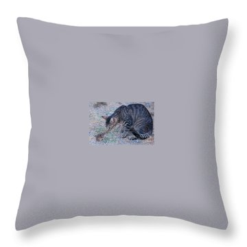 Friends Or Enemies  Throw Pillow