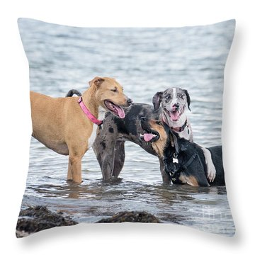 Friends Throw Pillow by Stephanie Hayes