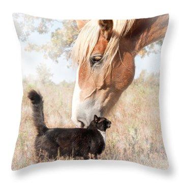 Dreamy Friendship Throw Pillow