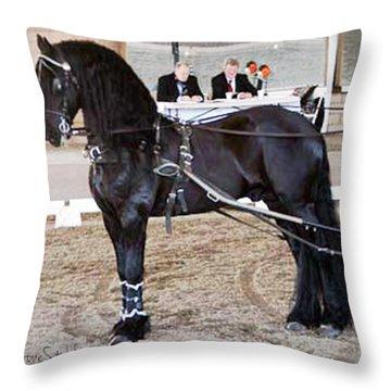 Friesian Stallion Under Harness Throw Pillow