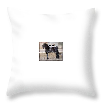 Friesian Stallion Under Harness Throw Pillow