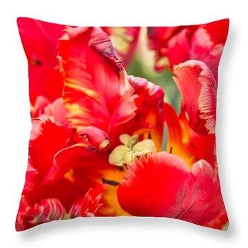 Throw Pillow featuring the photograph Frilled Stunner by Cathy Donohoue