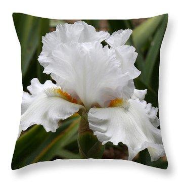Frilly White Iris Flower Throw Pillow