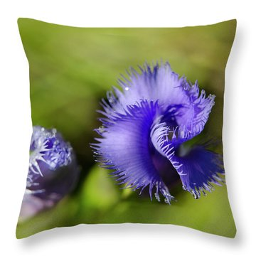 Throw Pillow featuring the photograph Fringed Gentian by Ann Bridges