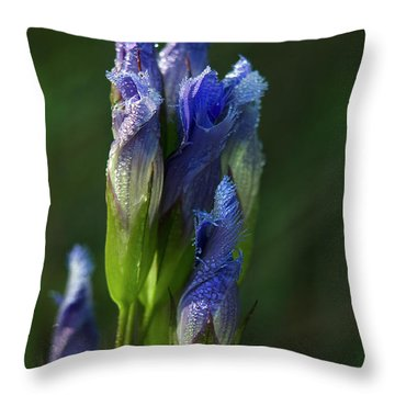 Throw Pillow featuring the photograph Fringed Getian With Dew by Ann Bridges