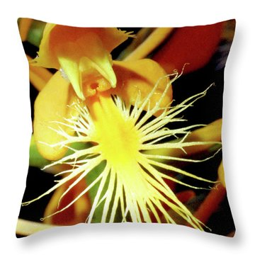 Fringed Yellow Orchid Throw Pillow by Meta Gatschenberger